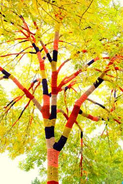 Tree cozy